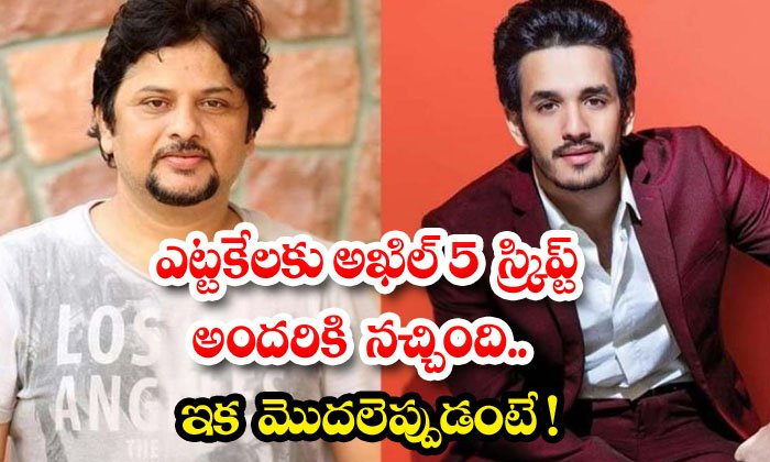 TeluguStop.com - Akhil And Surendar Reddy Movie Shooting For February
