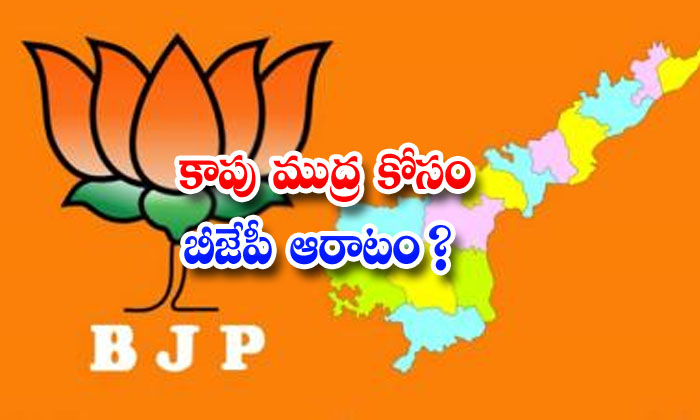 TeluguStop.com - Bjp Try To Kapu Caste Support In Ap
