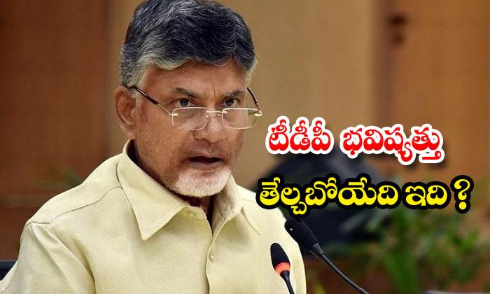 Chandrababu Tention On Tirupathi By Elections-TeluguStop.com