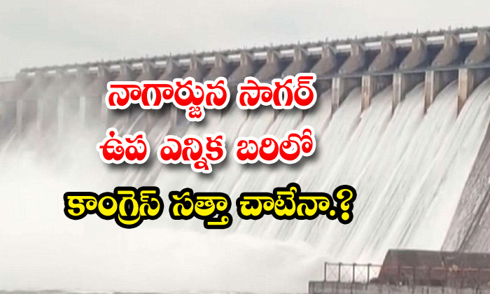 Will Congress Win In Nagarjuna Sagar By-TeluguStop.com