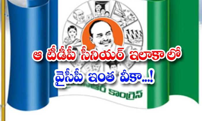 TeluguStop.com - Ycp Is So Weak In That Tdp Senior Constituency