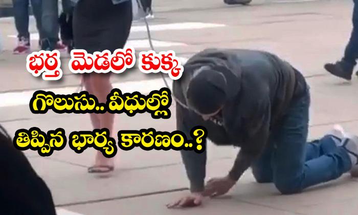 TeluguStop.com - Canadian Women Walks Husband On Leash After Curfew Imposed