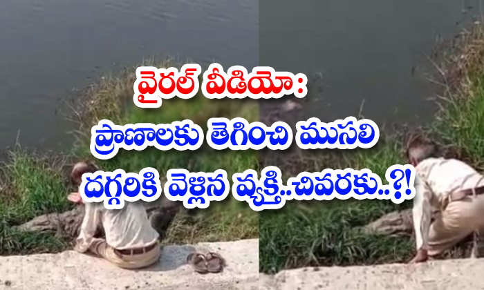 Viral Video The Man Who Survived And Went To The Old Man Finally-TeluguStop.com