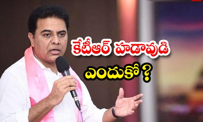 Telangana Minister Ktr Active Roll On Party Issues-TeluguStop.com