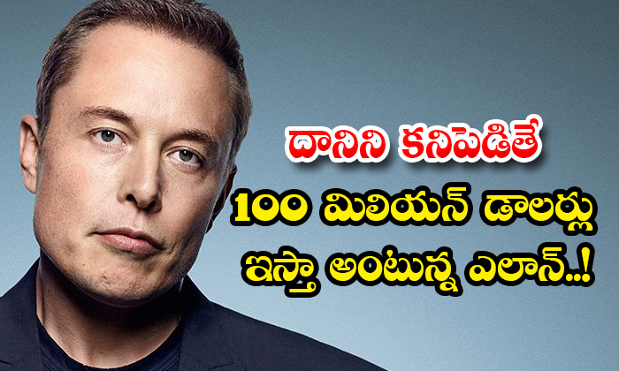 TeluguStop.com - Elon Says He Will Give 100 Million If He Finds It