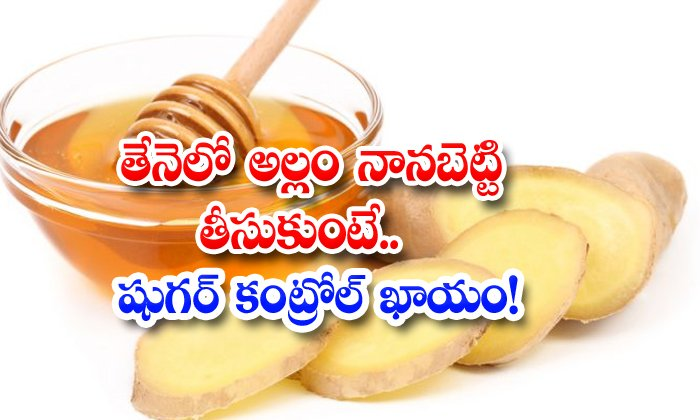 TeluguStop.com - Health Benefits Of Ginger Soaked In Honey