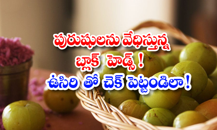 TeluguStop.com - Gooseberry Helps To Reduce Blackheads