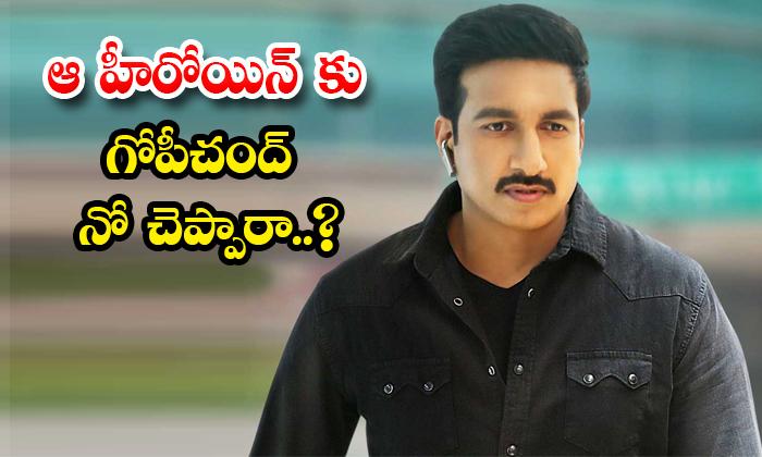 TeluguStop.com - Hero Gopichand Said No To Maruti