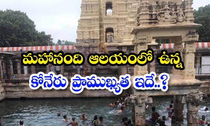 మహానంది ఆలయంలో ఉన్న కోనేరు ప్రాముఖ్యత ఇదే..?