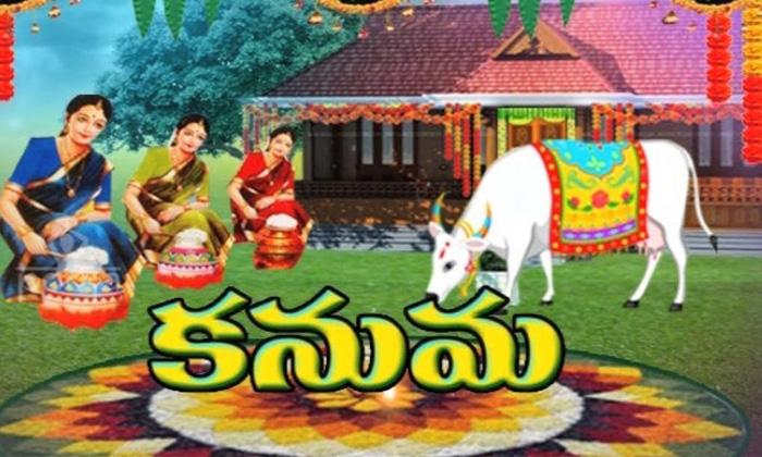 Why Do Not Travel On Kanuma Festival-TeluguStop.com