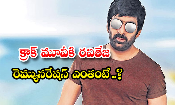 TeluguStop.com - Star Hero Raviteja Remuneration For Crack Movie