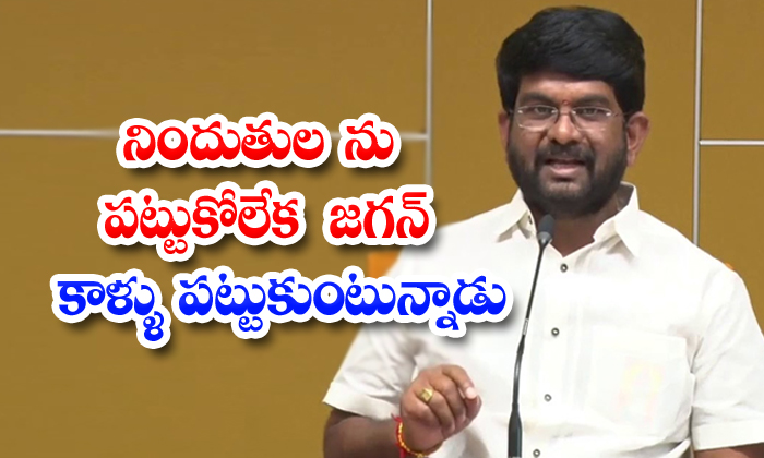TeluguStop.com - Tdp Mlc Fire On Jagan And Vellampalli Srinivas