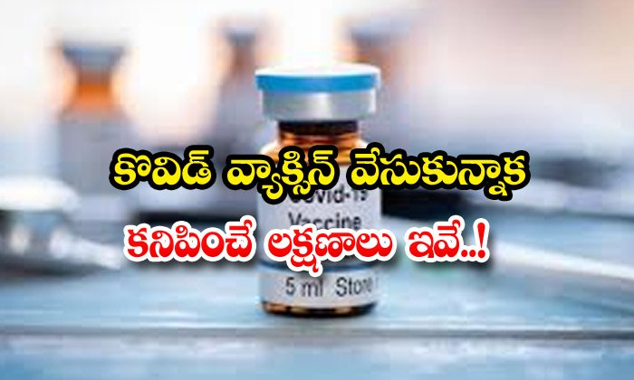 TeluguStop.com - These Are The Symptoms That Appear After Getting The Kovid Vaccine