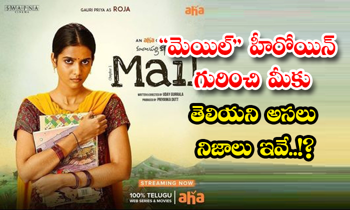 TeluguStop.com - These Are The Real Facts You Dont Know About The Mail Heroine