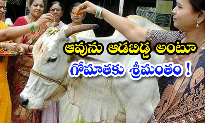 TeluguStop.com - They Are Treating Cow Has Their Daughter And Does Baby Shower