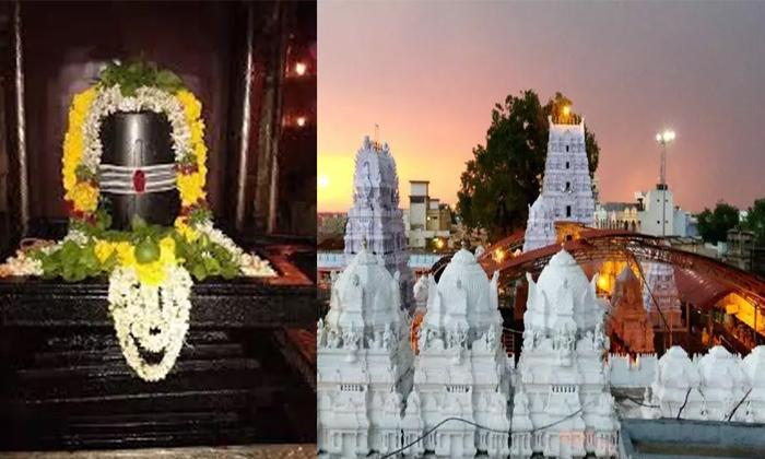 Telugu Lord Shiva, Muslims Along With Hindus, Shivaratri, Vemulawada, రాజరాజేశ్వర ఆలయం-Telugu Bhakthi