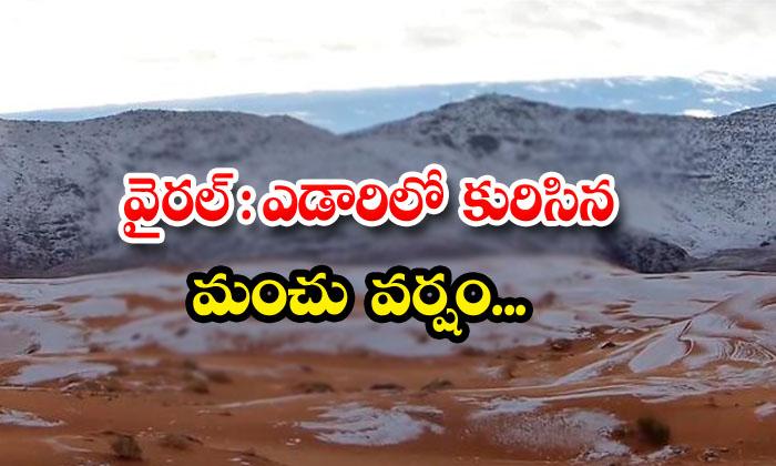 Viral Snowfall In The Desert-TeluguStop.com