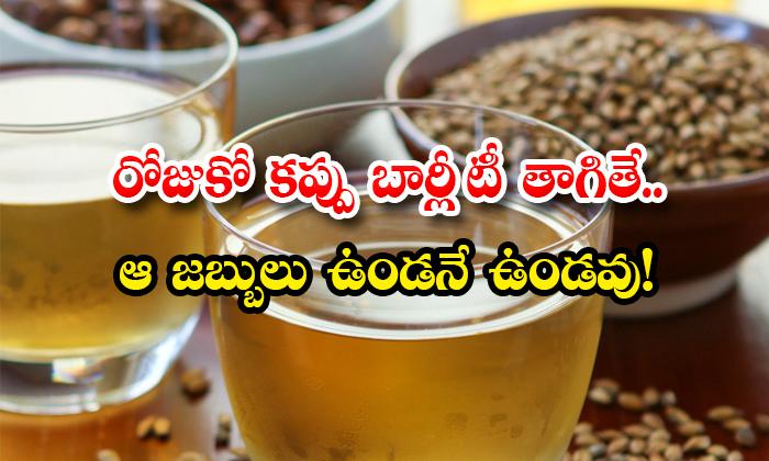 Wonderful Health Benefits Of Barley Tea-TeluguStop.com