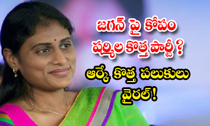 Ys Sharmila New Political Party Andrajyothi Special Article-TeluguStop.com