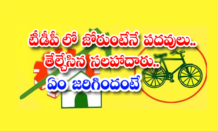 If You Have Energy Then You Will Get Tdp Post Settled Facilitator What Happened-TeluguStop.com