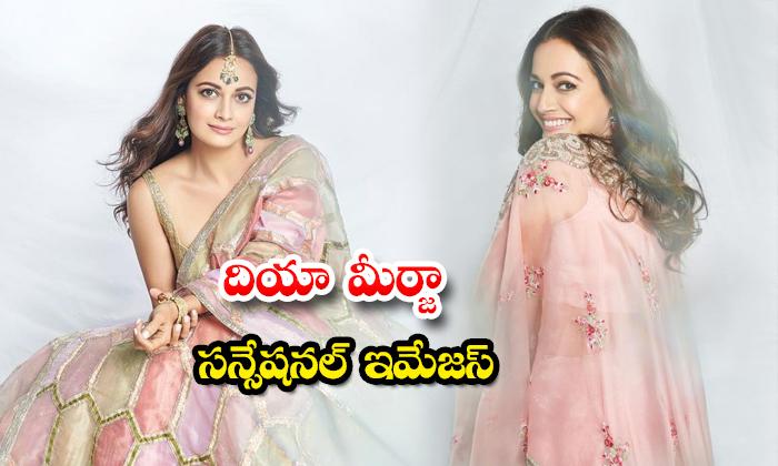 Actress dia mirza beautiful Pics-దియా మీర్జా సన్సేషనల్ ఇమేజస్