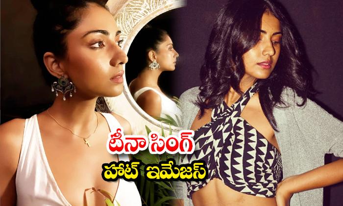 Beauty Hot Actress Teena Singh Spicy photoshoot-టీనా సింగ్ హాట్ ఇమేజస్
