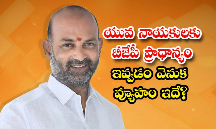 Is This The Strategy Behind The Bjps Preference For Young Leader-TeluguStop.com