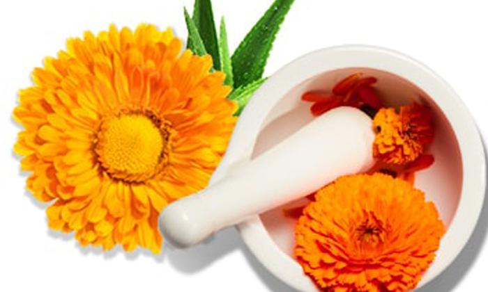 Beauty Benefits Of Marigold Flowers-చర్మ ఛాయను పెంచే బంతిపూలు.. ఖచ్చితంగా తెలుసుకోండి-Latest News - Telugu-Telugu Tollywood Photo Image-TeluguStop.com