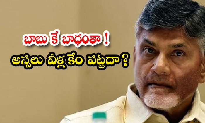 Although Chandrababu Is Working Hard For The Party The Party Leaders Do Not Care-TeluguStop.com