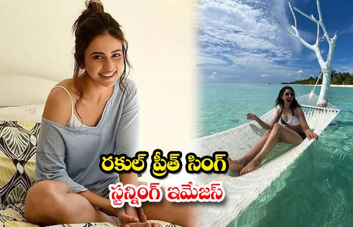 Tollywood actress Rakul Preet Singh Throwback clicks-రకుల్ ప్రీత్ సింగ్ స్టన్నింగ్ ఇమేజస్
