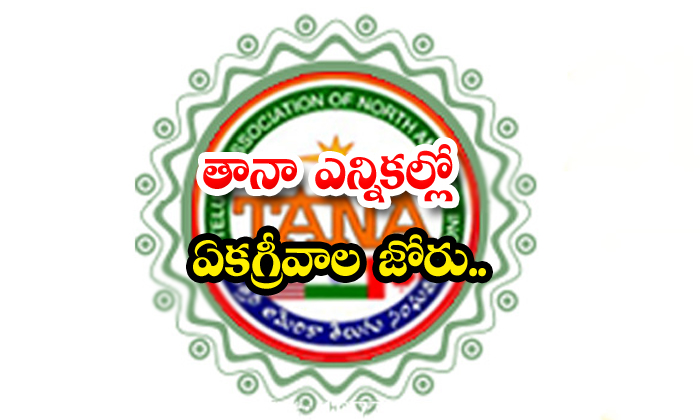 Unanimity Prevails In Tana Elections-TeluguStop.com