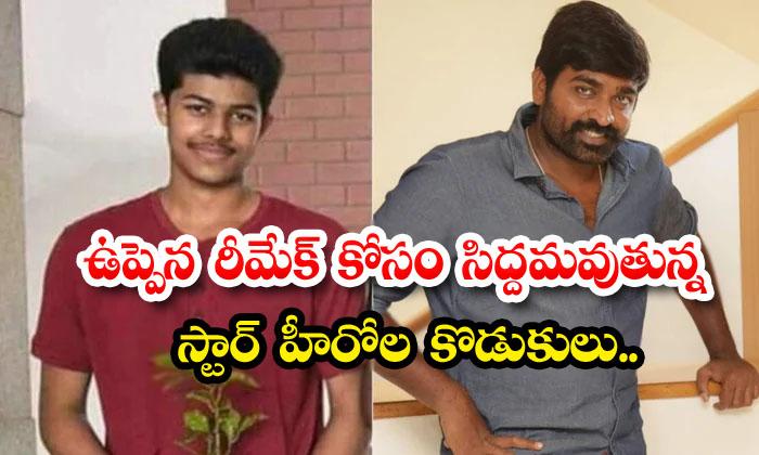 TeluguStop.com - Star Hero Sons Showing Interest To Uppena Remake