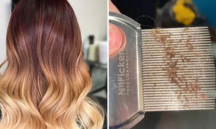 Viral Latest Hair Hair Lies Hair Care Factoryastrleiahair Stailistviral-TeluguStop.com