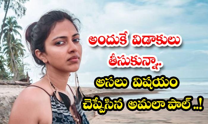 Heroine Amala Paul Shocking Comments About Her Divorce-TeluguStop.com