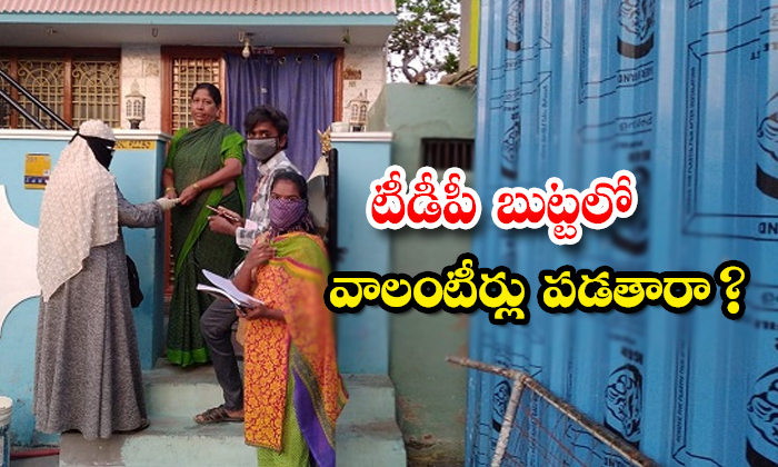 Village Volanteers Support Trying On Tdp-TeluguStop.com