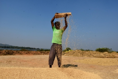 Bullish Commodity Prices Boost Agri Export Prospects-TeluguStop.com