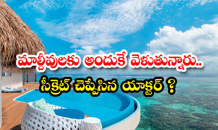 Movie Stars And Celebrities Are Going To Thee Maldives If They Have Time-TeluguStop.com