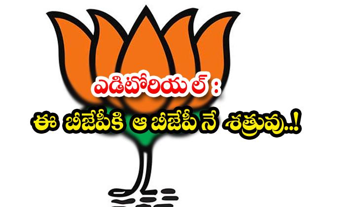 TeluguStop.com - Ap Bjp Troubled On Central Bjp Leders Desistions About Vizag Steel Plant Issue