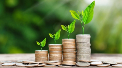 Govt May Look At Amc/arc Model For Asset Monetisation Programme-TeluguStop.com