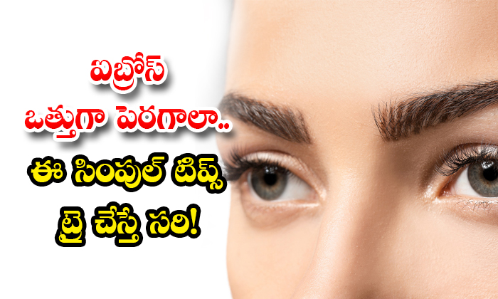 Want To Grow Eyebrows Thick Try These Simple Tips-TeluguStop.com