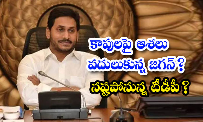 TeluguStop.com - Jagan Going To Be Reduced The Preference For Kapu Caste