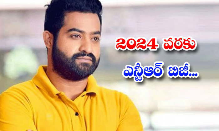Ntr Busy With Upcoming Projects Upto 2024-TeluguStop.com