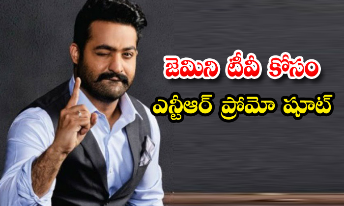 Ntr Gemini Tv Game Show Promo Shooting Completed-TeluguStop.com