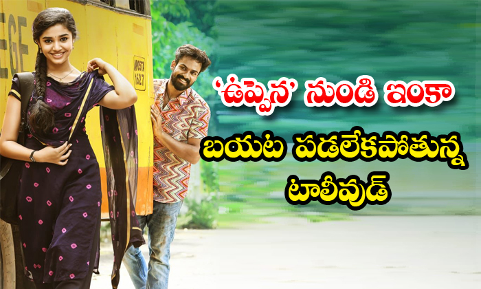 TeluguStop.com - Mahesh Babu And Chiranjeevi Others Comments On Uppena Movie