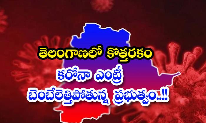 New Type Corona Virus In Telangana-TeluguStop.com