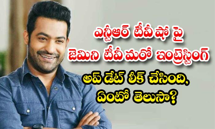 Ntr Gemini Tv Show Update-TeluguStop.com
