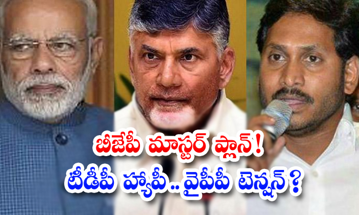 Ysrcp Leaders Tention On Bjp Politics-TeluguStop.com