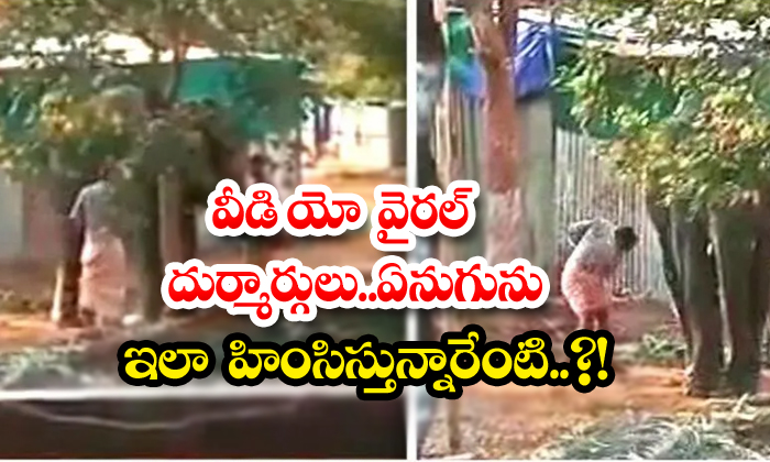 TeluguStop.com - Video Viral Wicked Why Are You Torturing An Elephant Like This
