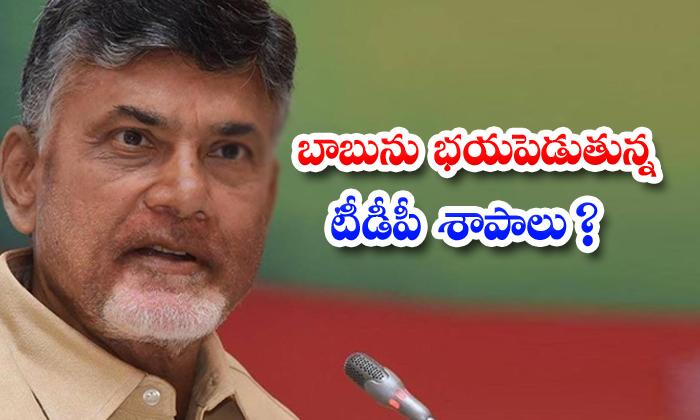 TeluguStop.com - Tdp Curses Scaring Babu