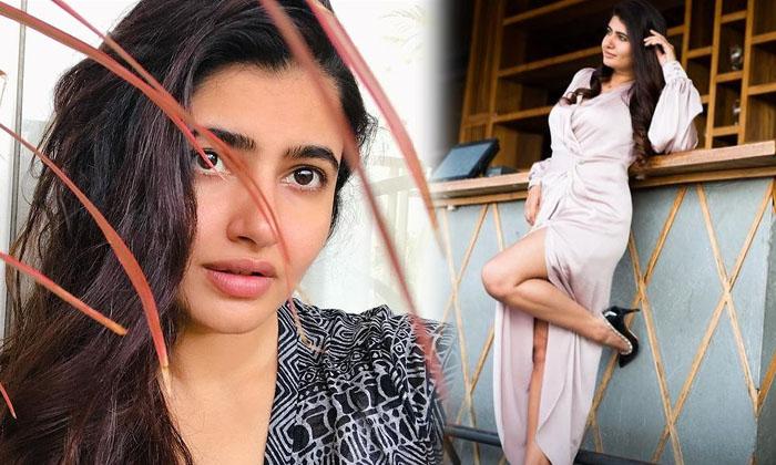 Actress Ashima Narwal Latest Images-telugu Actress Hot Photos Actress Ashima Narwal Latest Images - Telugu Instagram Ac High Resolution Photo